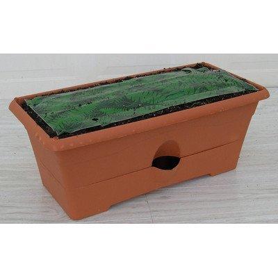 Garden Patch Box (Garden Patch RZ.GB270B66 Forest Green The Garden Patch Grow Box™)