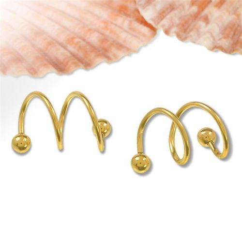 2pcs Stainless S Spiral Helix Ear Stud Earring Lip Nose Ring Cartilage Piercing ERAWAN sakcharn (Gold)