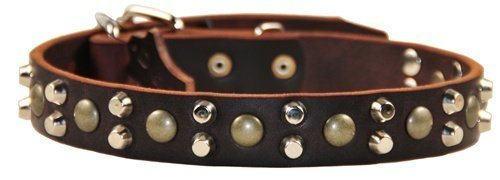 Dean and Tyler Bumps and BITS , Dog Collar with Capped Rivets and Chrome Plated Steel Hardware Brown Size 18  by 1-1 5  Fits Neck 16  to 20