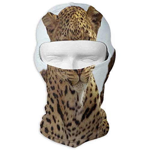 YIXKC Balaclava Spotted Panther Wild Life Fabulous Full Face Masks UV Protection Snowboarding for Men -
