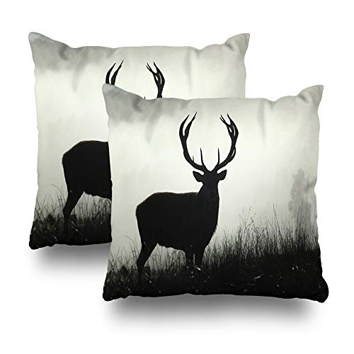 Soopat Decorative Throw Pillow Cover Square Cushion 18 x 18 Inch Set of 2, Red Deer Morning Fog West Coast South Island Greeting Invitation Thank You Scrap Home Decor -