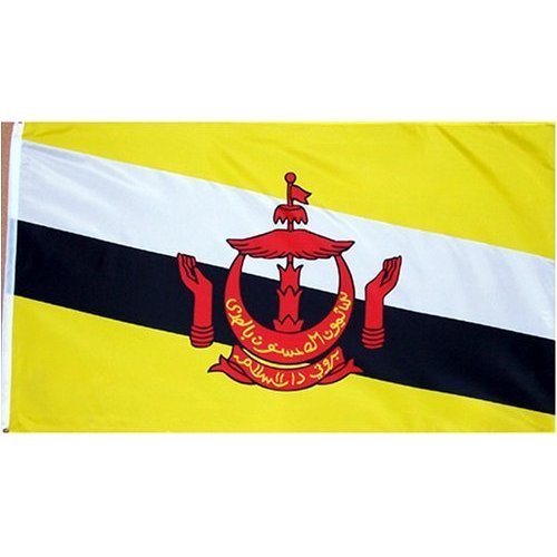 Brunei Flag Polyester 3 ft. x 5 ft.