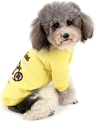 Zunea Abrigo para Perro para Perros pequeños, Ropa cálida para Cachorros de Invierno, Suave algodón Acolchado, suéter de Camisa para Clima frío, Ropa para Mascotas para Chihuahua, Perro, Gatos: Amazon.es: Productos para