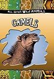 Camels, Various, Gareth Stevens Editorial, 0836841816