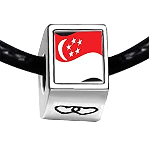 Chicforest Silver Plated Singapore Flag Photo Double Heart Charm Beads Fits Pandora Bracelet