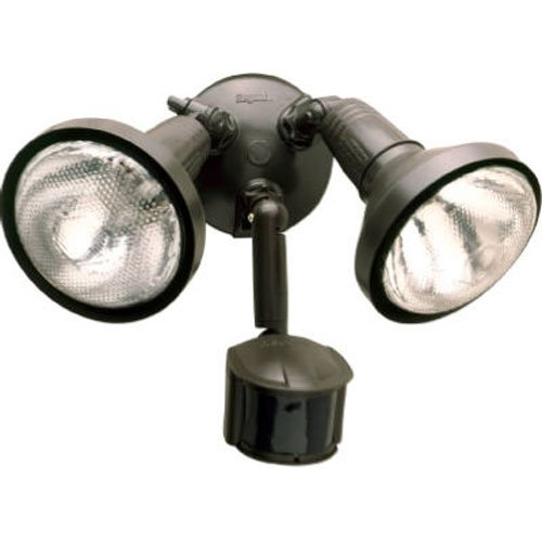 Regent Outdoor Flood Lights in US - 2