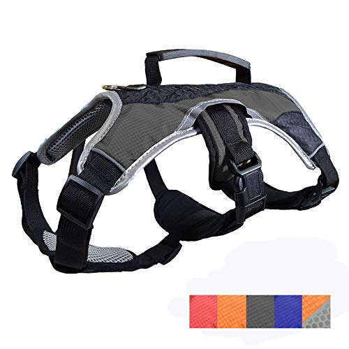 Dog Walking Lifting Carry Harness, Support Mesh Padded Vest, Accessory, Collar, Lightweight, No More Pulling, Tugging or Choking, for Puppies, Small Dogs (Black, Large), by Downtown Pet Supply (Dog Assist Lift Harness)