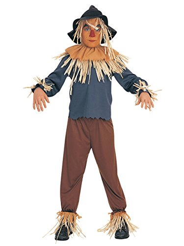 Children's Scarecrow Costumes (Wizard of Oz Child's Scarecrow Costume, Large)
