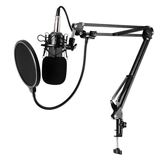 Capacitor Microphone, Alloet BM-800 Karaoke Studio Cardiod Condenser Capacitor Microphone Music Recording Mic for PC Laptop Record KTV Singing