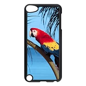 Diyphone Hummingbird Phone Case For For Samsung Galaxy S6 Cover