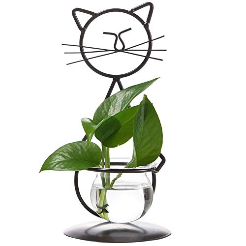 - Marbrasse Desktop Glass Planter Vase Holder, Modern Creative Cat Plant Terrarium Metal Stand for Hydroponics Plants Home Garden Wedding Decoration Outdoor Planter Ideas (Style 2)