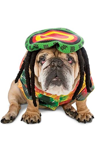 Rasta Imposta Rasta Dog Costume, Medium -