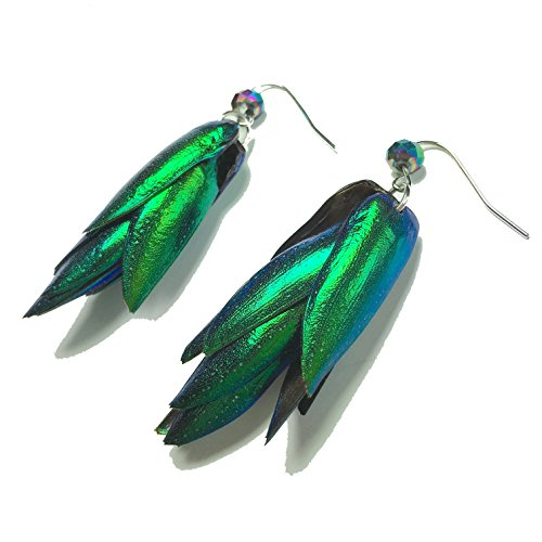 real-natural-beetle-bug-insect-iridescent-blue-green-wings-earrings-with-green-pendant