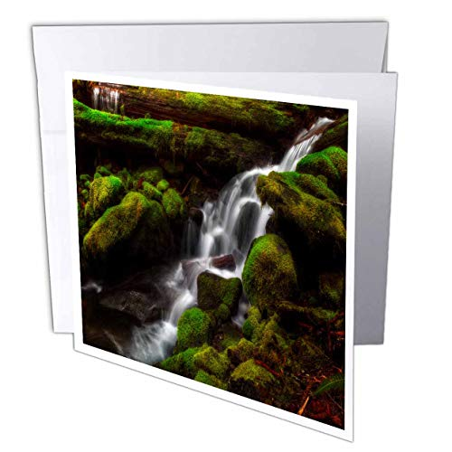 (3dRose Mike Swindle Photography - Landscapes - Creek Flowing Down Over Moss Covered Rocks - 1 Greeting Card with Envelope (gc_307822_5))