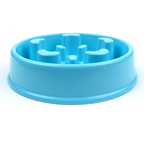 Alfie Pet by Petoga Couture - Harry Slow-Eating Anti-Gulping Pet Food Bowl with Food Scoop Set (for Dogs & Cats) - Color: Blue by Alfie (Image #4)