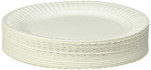 Empress Uncoated Paper Plate, 9 Inches, White, Pack of 100