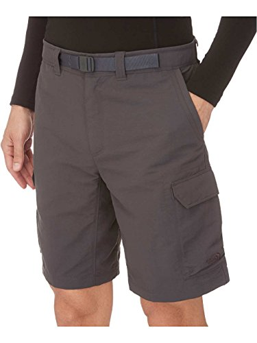 the-north-face-paramount-ii-cargo-short-mens-asphalt-grey-36-reg