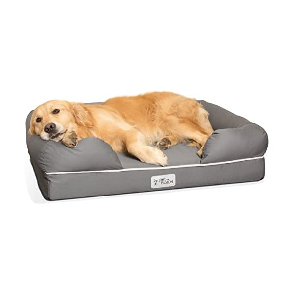 PetFusion Ultimate Dog Bed & Lounge. (Large Gray, 36 x 28 x 9.5). Premium Edition w/Solid 4 Memory Foam. [Replacement… Click on image for further info.
