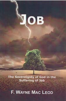 The suffering in the book of job