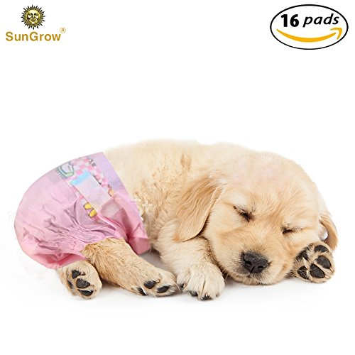 Serenity Small Rug (Disposable Dog Diapers --- Suitable for outdoor activities and long trips – Environmentally pet-friendly – Pet tail hole design – Anti-leakage pet diapers – Rapid liquid absorbing function)