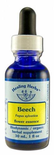 Flower Essence Healing Herbs Organic Beech Dropper -- 1 fl oz