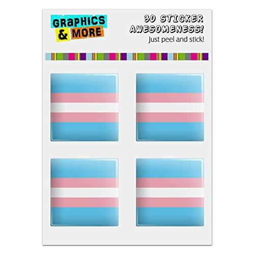 - GRAPHICS & MORE Transgender Trans Pride Flag Original Blue Pink White Computer Case Modding Badge Emblem Resin-Topped 1