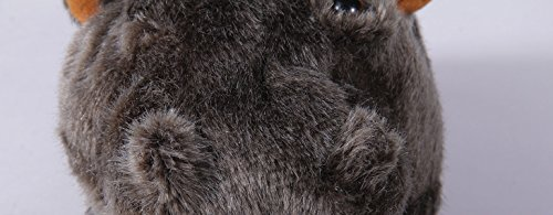 Foot Hippo Full Happy Slippers Feet 50 Animal Mens Premium Styles Womens AqUwq6p4