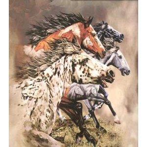 K2 Find 13 Horses Plush Rachel Mink Queen Blanket Signature Collection