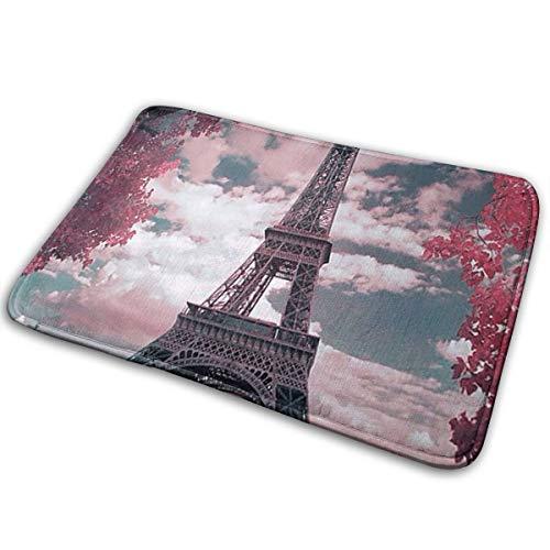 Baerg Non-Slip Stain Fade Resistant Door Mat Paris Eiffel Tower Living Room Rug Carpet 15.7