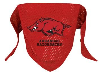 NCAA Arkansas Razorbacks Pet Bandana, Team Color, Small