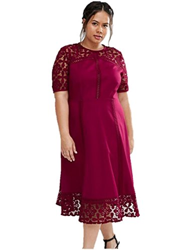 Fashion Elegant Women's Half Sleeve Sexy Lace Stitching Hollow Out Dress (XXX-Large, Red) (Plus Size Fairy Dress)