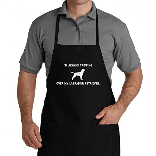 Eddany I'm always tripping over my Labrador Retriever Apron (Best Food For Labrador In India)