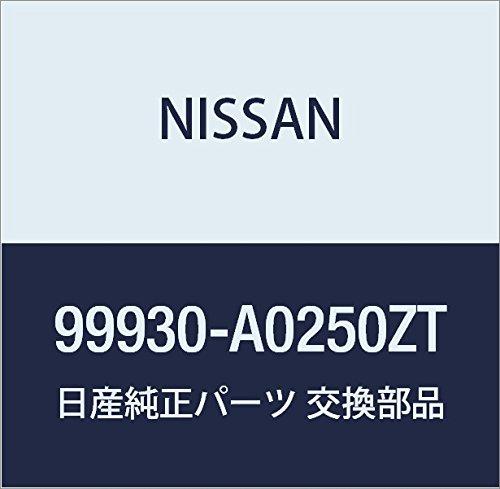 NISSAN(ニッサン)日産純正部品セット カバー シート 99930-A0260CHB00LEGM29Q--