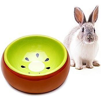 Mkono No-Tip Ceramic Rabbit Food Bowl Feeder for Guinea Pig Hamster Chinchilla, Kiwi
