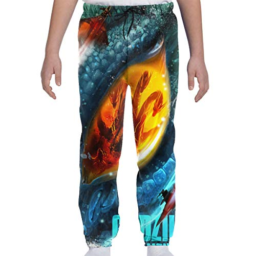 Godzilla 2 King of Monsters Boys Girls 3D Printed Casual Jogger Pants Teen Joggers Cool Sweatpants
