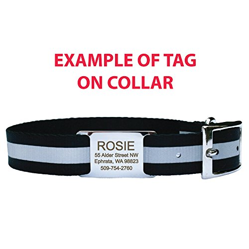 Fine For No Dog Collar Tag