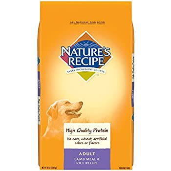 Natures Recipe Dog Food Real Chicken Sweet Potato And Pumpkin