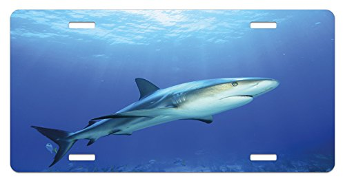 Ambesonne Shark License Plate, Fish in The Exotic Ocean Dreamy Water with Surreal Color Underwater World Image, High Gloss Aluminum Novelty Plate, 5.88 L X 11.88 W Inches, Violet Blue ()