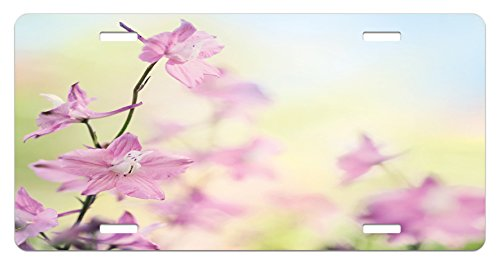Floral License Plate by Ambesonne, Larkspur Petals with Bokeh Backdrop Summer Season Botany Bouquet Image, High Gloss Aluminum Novelty Plate, 5.88 L X 11.88 W Inches, Baby Pink Pale Green - Bouquets Images