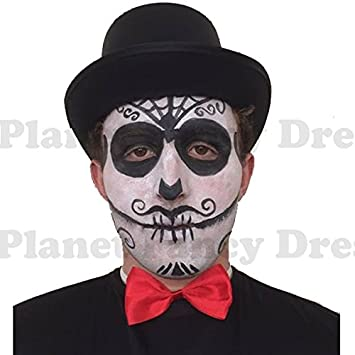 Blue Planet Fancy Dress Mens Day Of The Dead Make Up Face Paint
