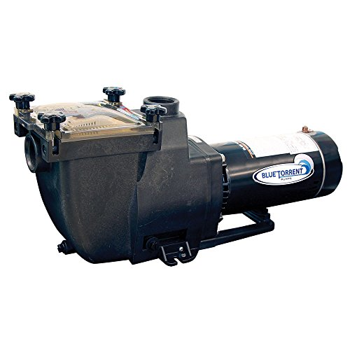 Blue Torrent Typhoon In Ground Pump 1Hp for Swimming Pools