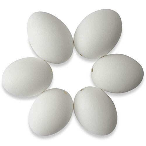 Set of 6 Blown Out Duck Eggshells