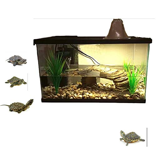 Compare Price To Water Turtle Habitat Kit Tragerlaw Biz