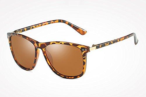 polarizadas TL Sol Masculino Calidad Femenino Mujer Hombre Gafas Negro Espalda Sunglasses Gafas Gafas Alta Sol Gris de de leopard Espejo de Sol Moda de wqSxaIrq