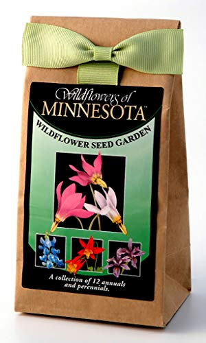 Minnesota Wildflower Seed Mix - A Beautiful Collection of Twelve Annuals & Perennials - Enjoy The Natural Beauty of Minnesota Flowers in Your Own Home - Garden Collection Native