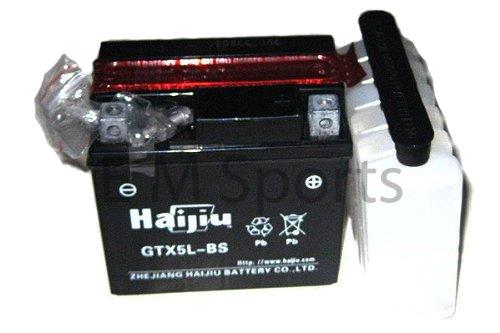 Go Kart Atv Quad 12 Volt Battery 5ah Parts 110cc 125cc 150cc 200cc GT5L-BS GTX5L-BS