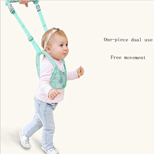(GHH Baby Walking Assistant, Handheld BabyToddler Belt Walker Stand Up and Learning Helper for Baby 8-24 Months,Green)