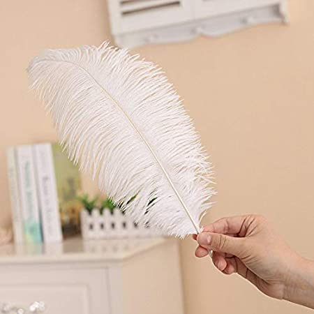 Hollosport 30 PCS 10-12inch Ostrich Feathers,Craft Art Soft Native Feather Accessories for Festival,DIY,Party,Wedding,Dream Catcher,Home Decoration White