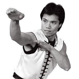 Century Master Tat Mau Wong's Choy Lay Fut Kung Fu DVD Series Titles (De Videos Fut)