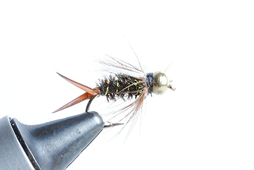 ph Fly - 6 Pack (#16) (Bead Head Prince Nymph)